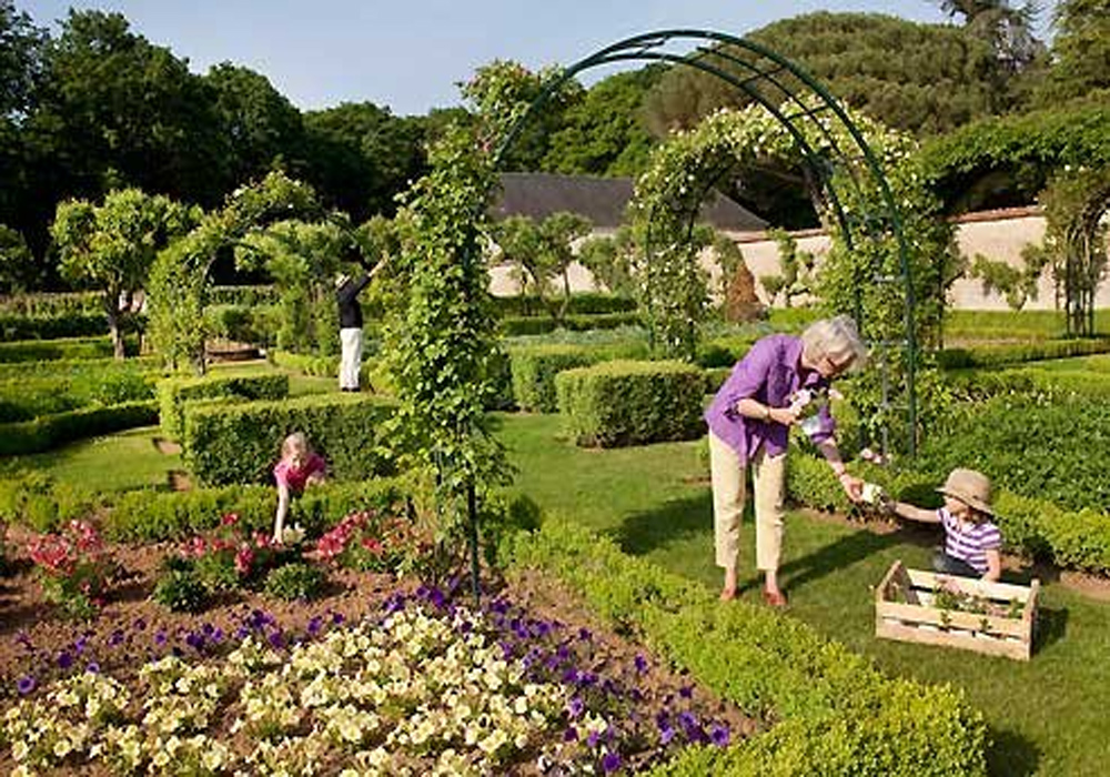 25 Gardening Tips Each and every Gardener Really should Know