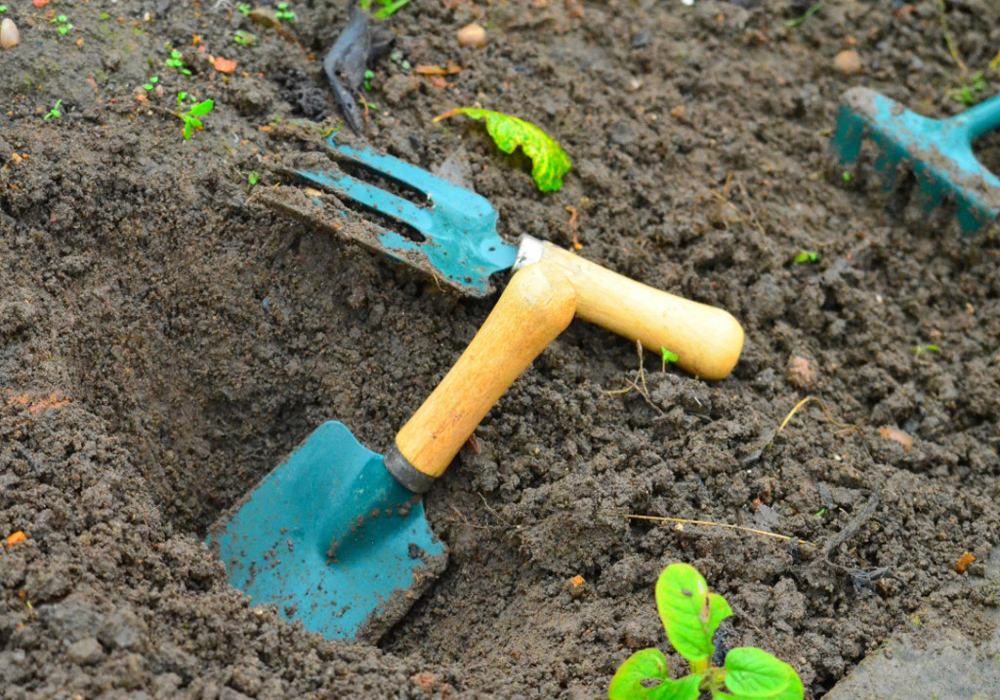 GARDEN EQUIPMENT - WHAT DO YOU REALLY NEED