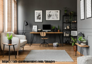 HOW TO OPTIMIZE ON INDOOR PLANTS - A GARDEN IN YOUR LIVING ROOM