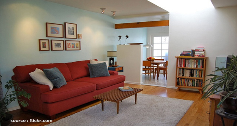 Healthy and Refreshing Living Room Arrangement